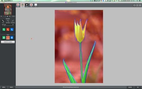 Topaz ReMask 4ScreenSnapz003.jpg