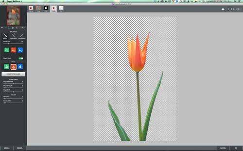 Topaz ReMask 4ScreenSnapz005.jpg