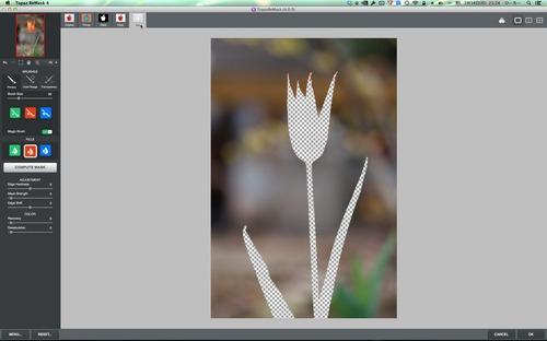 Topaz ReMask 4ScreenSnapz006.jpg