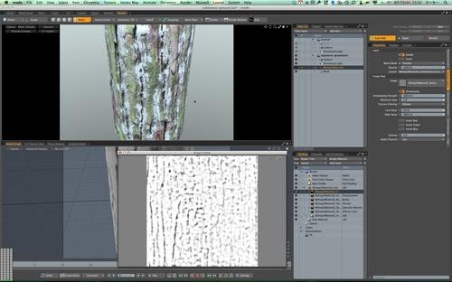 modoScreenSnapz002.jpg